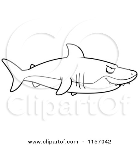 black and white shark in profile