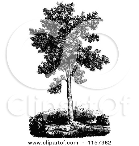 Clipart Retro Vintage Black And White Bare Tree 2 - Royalty Free ...