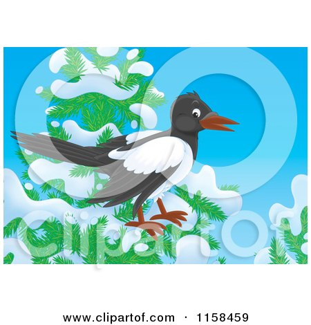 Cartoon of a Magpie on a Tree with Snow - Royalty Free Illustration by Alex Bannykh