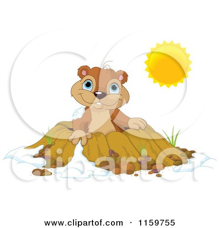 Cartoon of a Cute Groundhog Emerging from a Hole on a Sunny Day - Royalty Free Vector Clipart by Pushkin