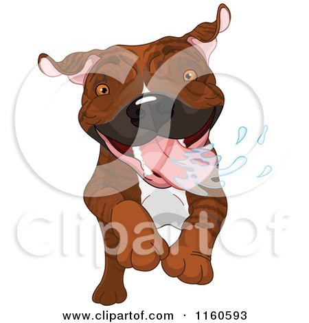 Cartoon of an Excited Brindle Pit Bull Dog Running and Drooling - Royalty Free Vector Clipart by Pushkin