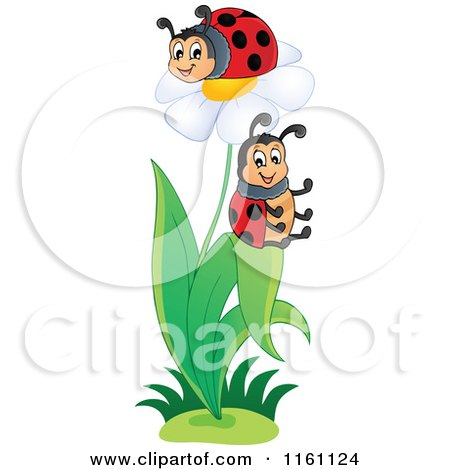 Cartoon of Ladybugs on a Daisy Plant - Royalty Free Vector Clipart by visekart