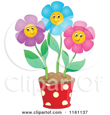 Cartoon of Colorful Daisy Flowers in a Pot - Royalty Free Vector Clipart by visekart