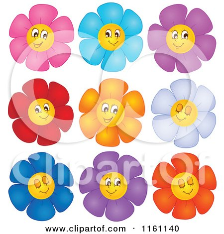 Colorful Daisy Flower Faces
