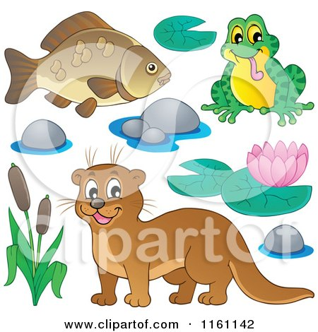 Cartoon of a Happy Otter Frog and Fish - Royalty Free Vector Clipart by visekart