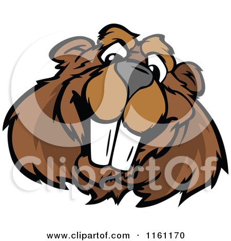 Cartoon of a Happy Beaver Mascot Face - Royalty Free Vector Clipart by Chromaco