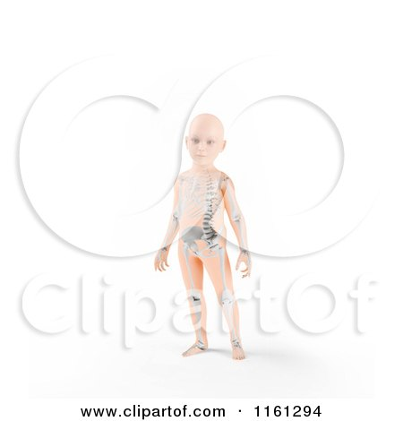 Clipart of a 3d Child Standing with a Visible Skeleton - Royalty Free CGI Illustration by Mopic
