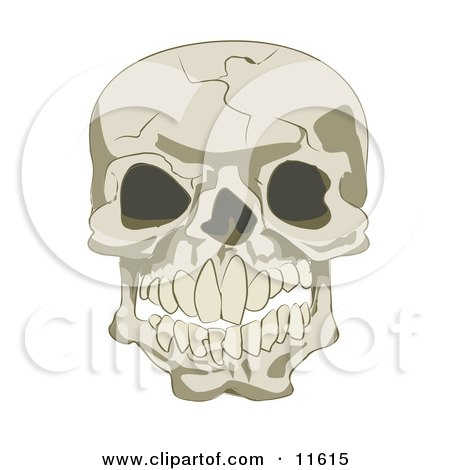 Cracked Human Skull Clipart Illustration by AtStockIllustration