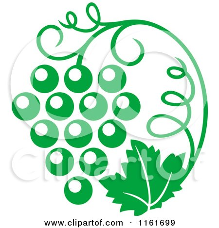 Clipart of a Green Grape Vine and Bunch - Royalty Free Vector Illustration by Vector Tradition SM
