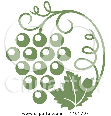 Clipart of an Olive Green Grape Vine and Bunch - Royalty Free Vector Illustration by Vector Tradition SM