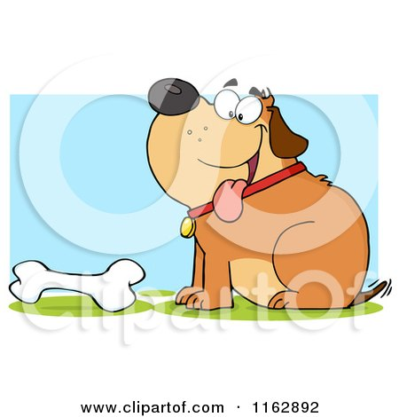 Cartoon of a Happy Chubby Brown Dog Sitting by a Bone on Blue - Royalty Free Vector Clipart by Hit Toon