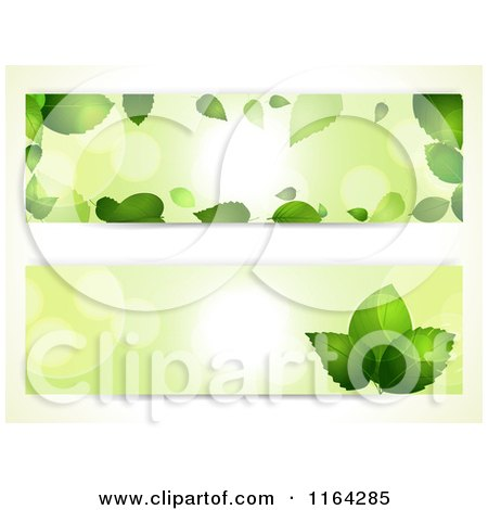 Clipart of Green Leaf and Light Flare Website Banners - Royalty Free Vector Illustration by elaineitalia