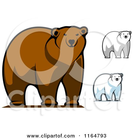 Clipart of Brown and Polar Bears 3 - Royalty Free Vector Illustration by Vector Tradition SM