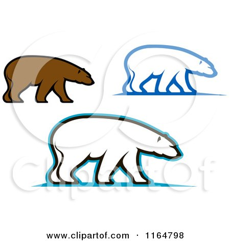 Clipart of Brown and Polar Bears - Royalty Free Vector Illustration by Vector Tradition SM