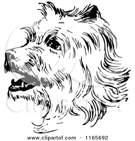 Clipart of a Retro Vintage Black and White Terrier Dog - Royalty Free Vector Illustration by Prawny Vintage