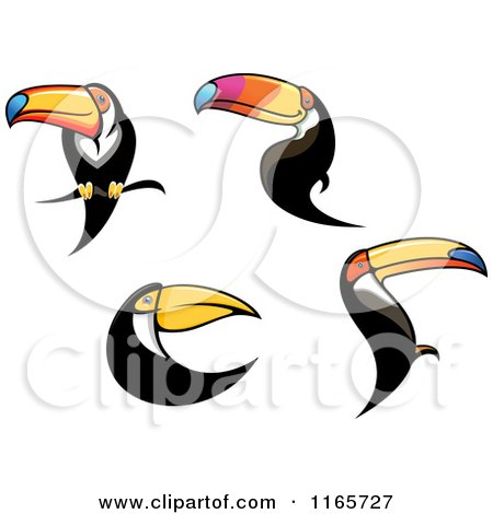 Clipart of Toucan Birds - Royalty Free Vector Illustration by Vector Tradition SM