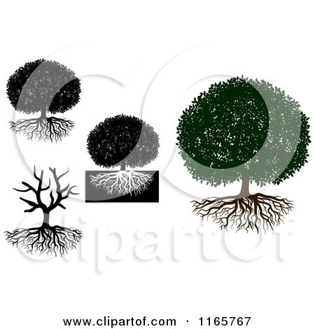 Clipart of Trees and Roots - Royalty Free Vector Illustration by Vector Tradition SM