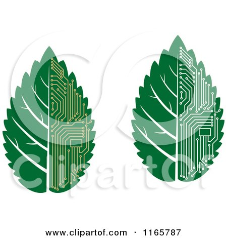 Clipart of Green Computer Motherboard Circuit Leaves - Royalty Free Vector Illustration by Vector Tradition SM