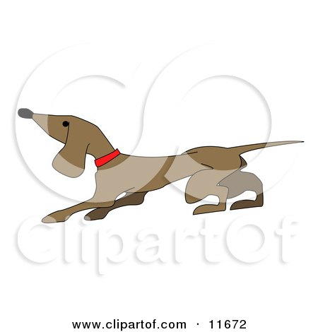 Cute Little Dachshund Dog Clipart Illustration by AtStockIllustration