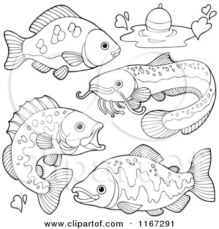 outlined river fish and a fishing bob