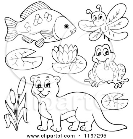 Cartoon of an Outlined Fish Dragonfly Frog Otter and River Plants - Royalty Free Vector Clipart by visekart