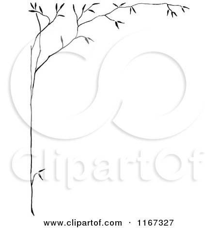 Royalty Free Stock Illustrations of Branches by Prawny ...
