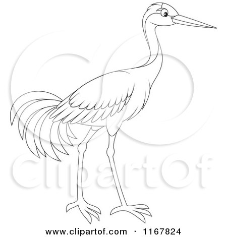 Cartoon of an Outlined Sarus Crane Bird - Royalty Free Vector Clipart by Alex Bannykh