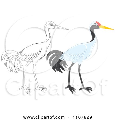 Cartoon of a Colored and Outlined Sarus Crane Bird - Royalty Free Vector Clipart by Alex Bannykh