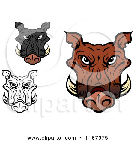 Clipart of Tusked Boar Heads - Royalty Free Vector Illustration by Vector Tradition SM