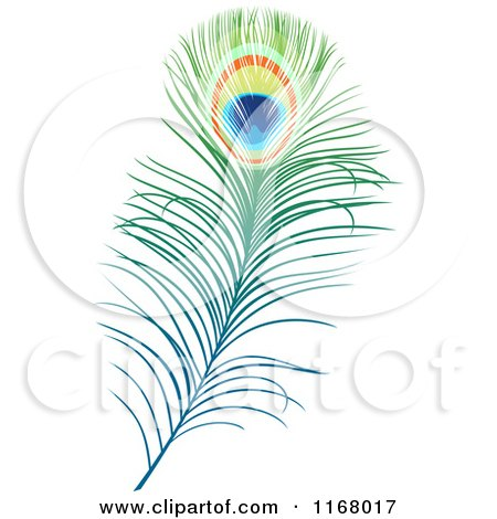 Clipart of a Peacock Feather - Royalty Free Vector Illustration by Vector Tradition SM