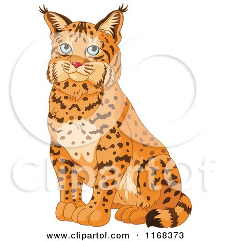 Cartoon of a Cute Sitting Bobcat - Royalty Free Vector Clipart by Pushkin