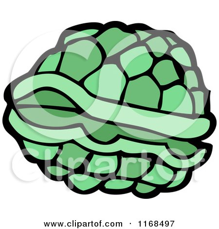 Turtle Shell Vector Turtle Shell by