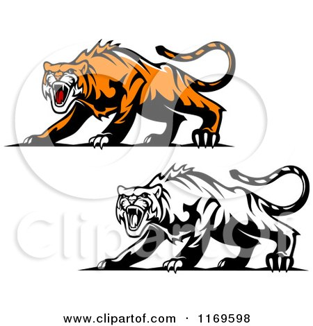 Clipart of Roaring Aggressive Tigers - Royalty Free Vector Illustration by Vector Tradition SM