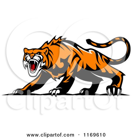 Clipart of a Roaring Aggressive Tiger - Royalty Free Vector Illustration by Vector Tradition SM
