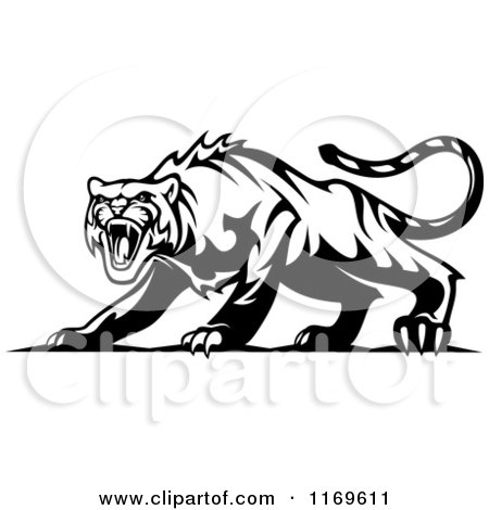 Clipart of a Black and White Roaring Aggressive Tiger - Royalty Free Vector Illustration by Vector Tradition SM