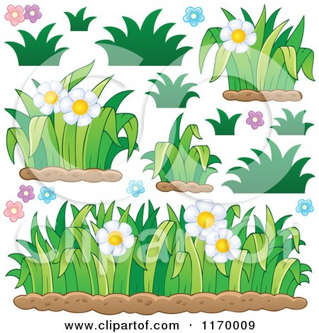 Cartoon of Daisy Flowers and Grss - Royalty Free Vector Clipart by visekart