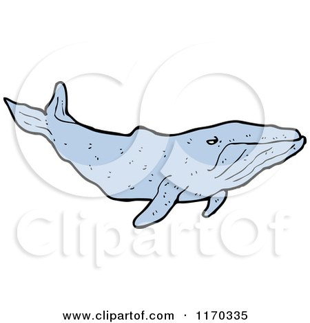 Cartoon of a Whale - Royalty Free Vector Illustration by lineartestpilot