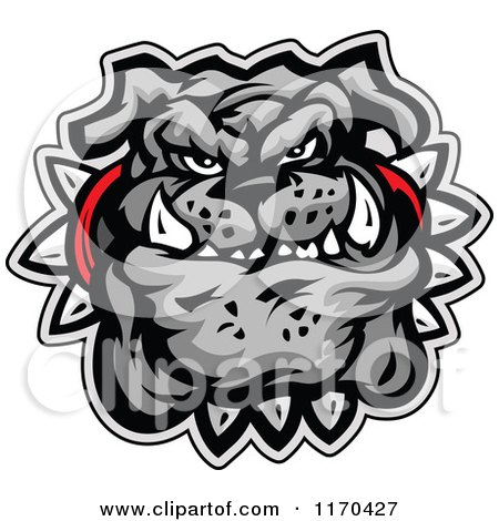 Cartoon of a Tough Gray Bulldog Face with a Spiked Collar - Royalty Free Vector Clipart by Chromaco