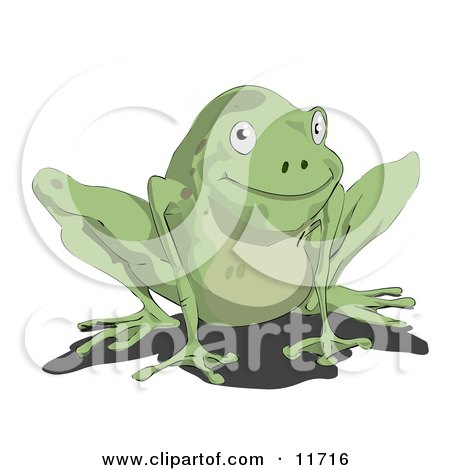 Cute Little Green Frog Posters, Art Prints