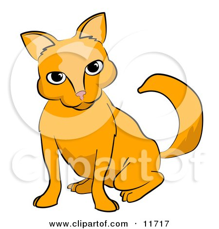 Frisky Orange Cat Clipart Illustration by AtStockIllustration