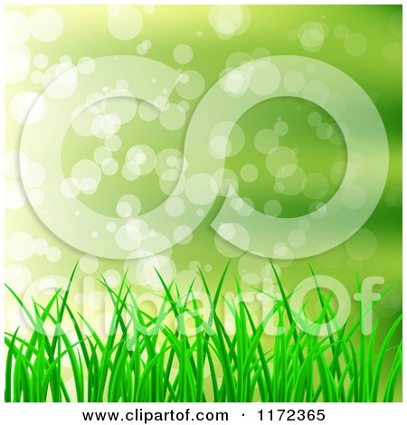 Clipart of a Green Grass Background with Light Flares - Royalty Free Vector Illustration by vectorace