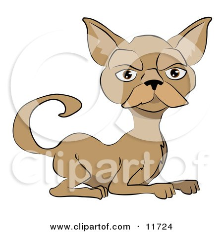 Brown Cat With a Mustache Clipart Illustration by AtStockIllustration