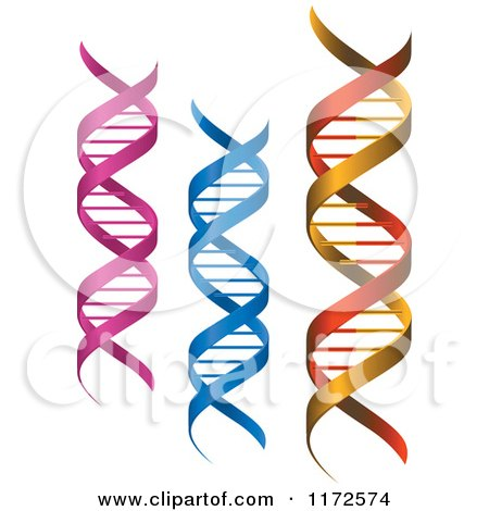 Clipart of Pink Blue and Red and Gold Dna Strands - Royalty Free Vector Illustration by Vector Tradition SM