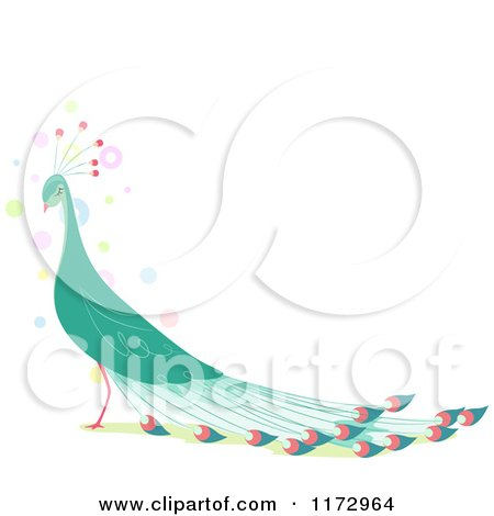 Cartoon of a Beautiful Green Peacock with Copyspace - Royalty Free Vector Clipart by BNP Design Studio
