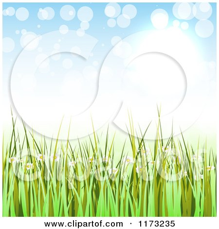 Clipart of a Green Spring Grass and Daisy Background with Light Flares - Royalty Free Vector Illustration by vectorace