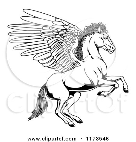 Cartoon of a Black and White Winged Pegasus Horse Rearing Outline - Royalty Free Vector Clipart by AtStockIllustration