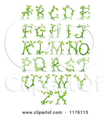 Clipart of Green Vine Alphabet Letters a Through Z - Royalty Free Vector Illustration by AtStockIllustration