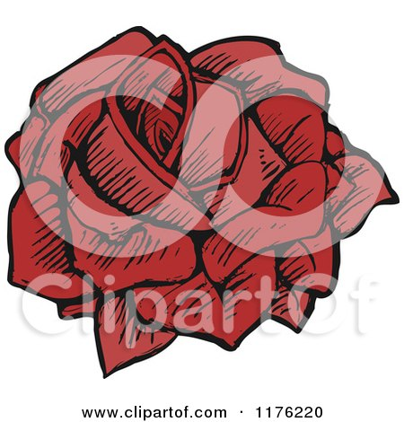 Cartoon of a Red Rose - Royalty Free Vector Illustration by lineartestpilot