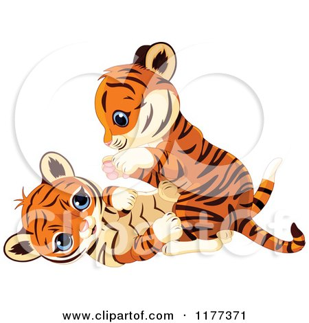 Cartoon of Cute Tiger Cubs Playing - Royalty Free Vector Clipart by Pushkin