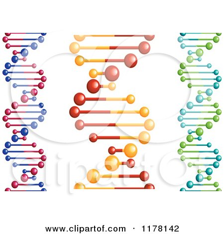 Clipart of DNA Strands - Royalty Free Vector Illustration by Vector Tradition SM